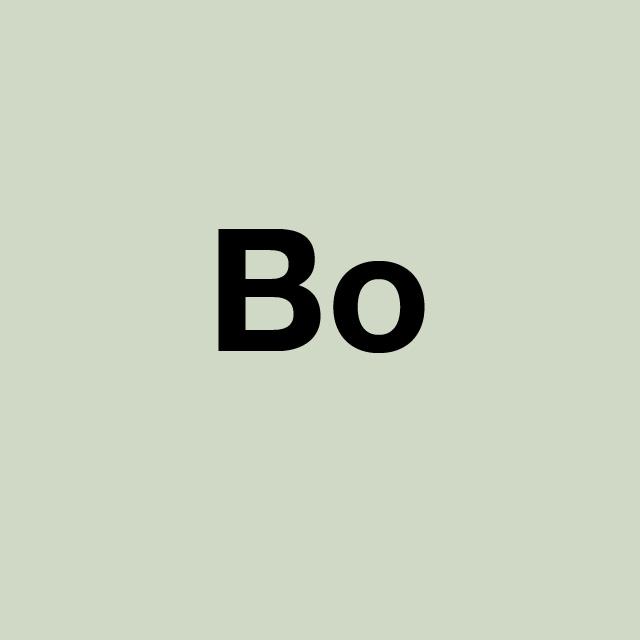 PRO_Über uns_Bo_fett